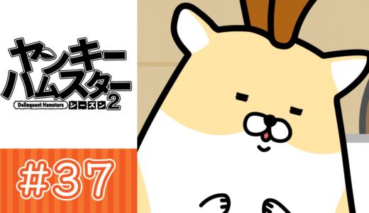 【アニメ】第37話「口笛コンサート」【YouTube】